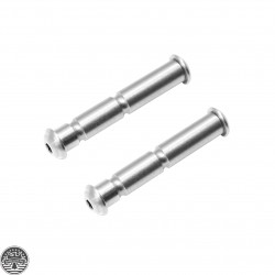 AR Platform Anti-Walk Pins - Stainless Steel