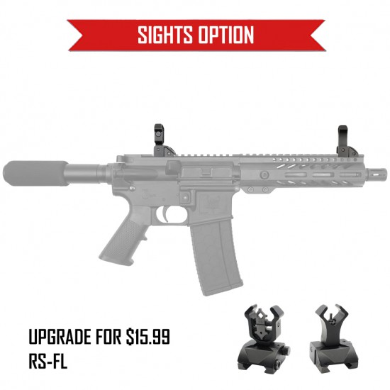AR-15 ''STANDARD'' Pistol Kit