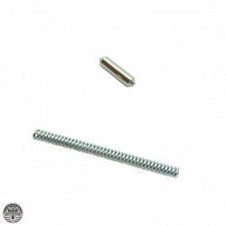 Takedown/Pivot Pin Detents & Springs (1 Set)